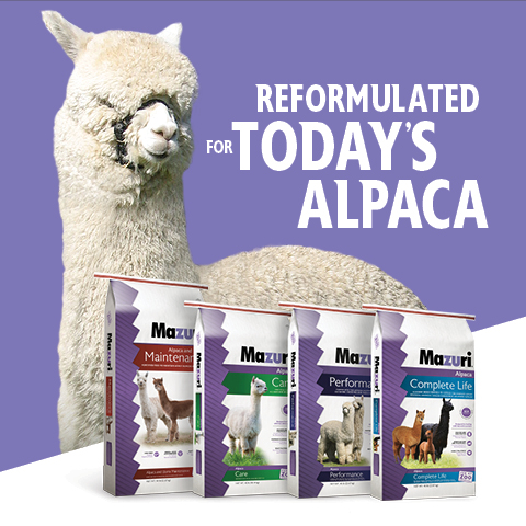 Reformulated Diets for Today's Alpaca with white alpaca and product bags