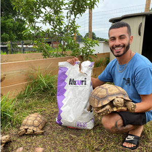 A man holds a bag of Mazuri tortoise feed in one hand and his pet tortoise in the other while kneeling in his backyard with two other tortoises walking near him.